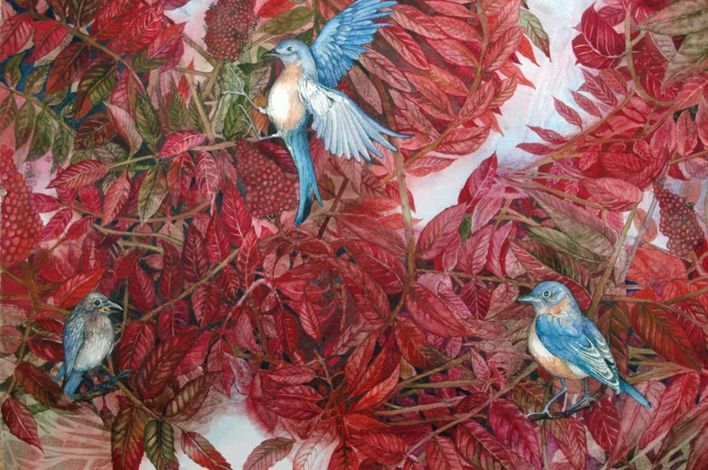 Helen Klebesadel, Bluebirds Love Sumac, 2010, watercolor