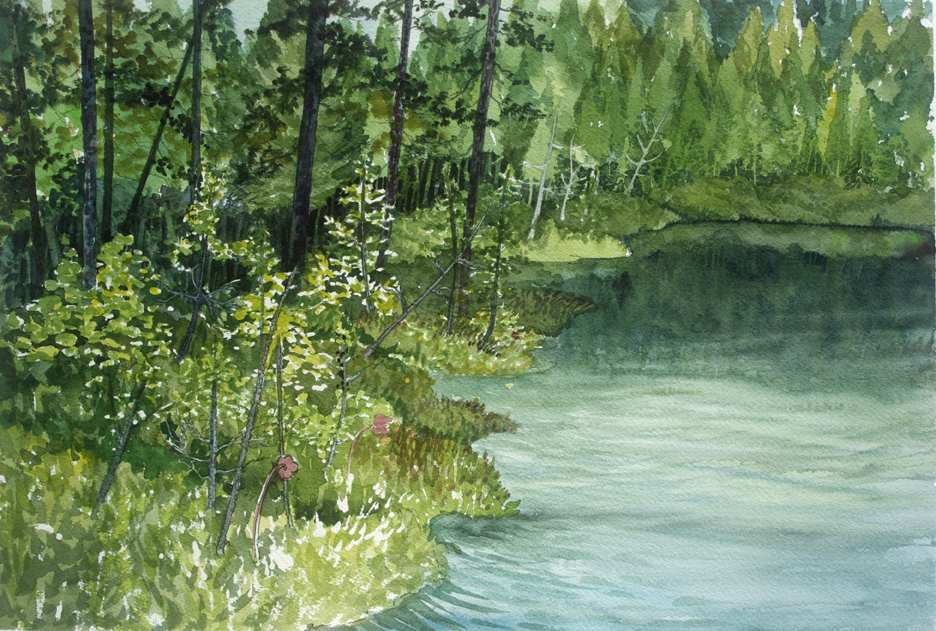 Crystal Bog, watercolor, June 2014