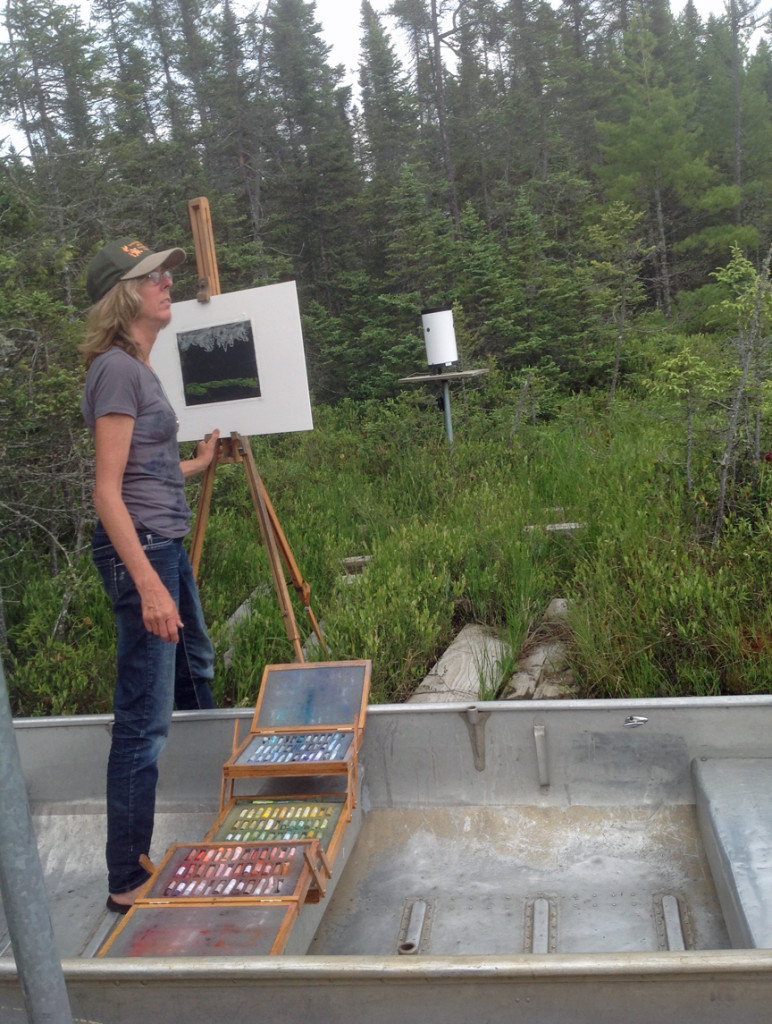 Terry Daulton drawing plein air with pastel o a beautiful day at  at Crystal Bog.