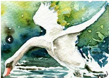 Swan Dive, watercolor, 2013 3rd place award , to Kathleen M. Ward, Edgerton, WI