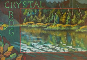 Crystal Bog, 19×27, pastel, 2012, by Terry Daulton. This is a piece was created for the Ecological Reflections show at National Science Foundation
